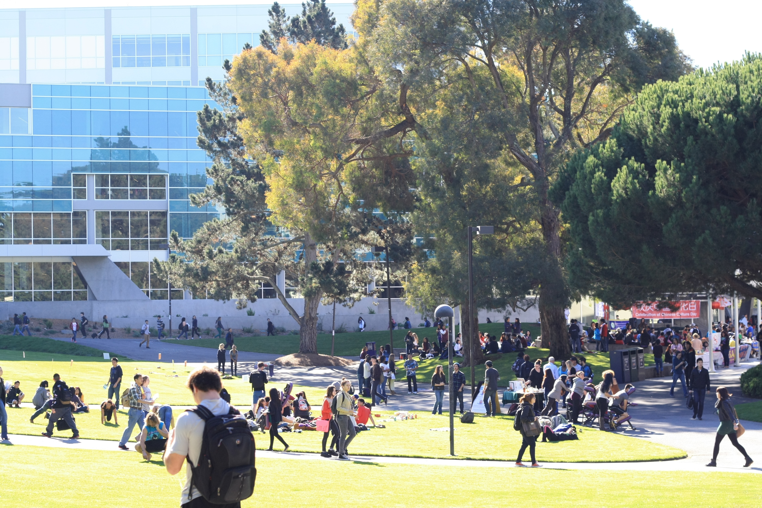 During the academic year, the blocks surrounding San Francisco State University's campus are lively with students walking to and from classes.