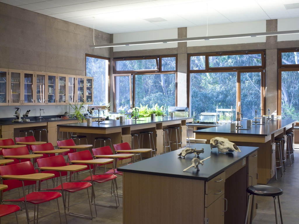 The San Francisco Waldorf High School is an excellent private school serving kids in kindergarten through grade 12.