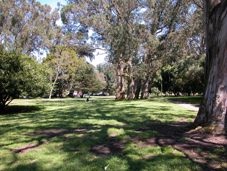 The Panhandle is a narrow, three-quarter-mile-long offshoot of Golden Gate Park offering sports courts, walking trails, and a playground.