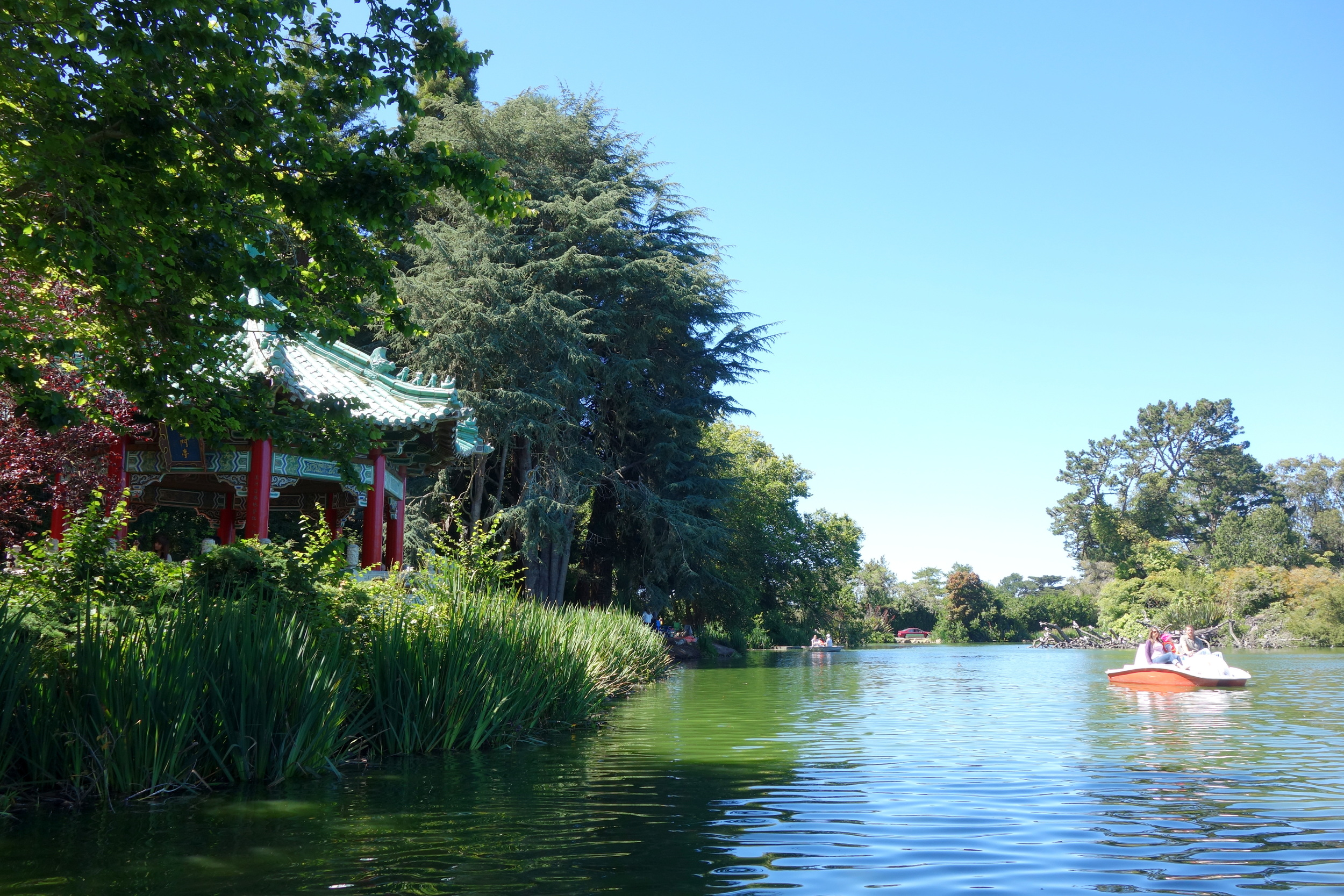 Residents can rent paddleboats and bikes at the tranquil Stowe Lake in Golden Gate Park.