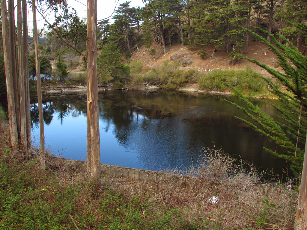 """The area south of Dewey Boulevard is known as Laguna Honda or the Forest Hill Extension. The name Laguna Honda means """"deep lagoon"""" in Spanish and refers to the Laguna Honda Reservoir at the intersection of Laguna Honda Boulevard and Clarendon Avenue."""