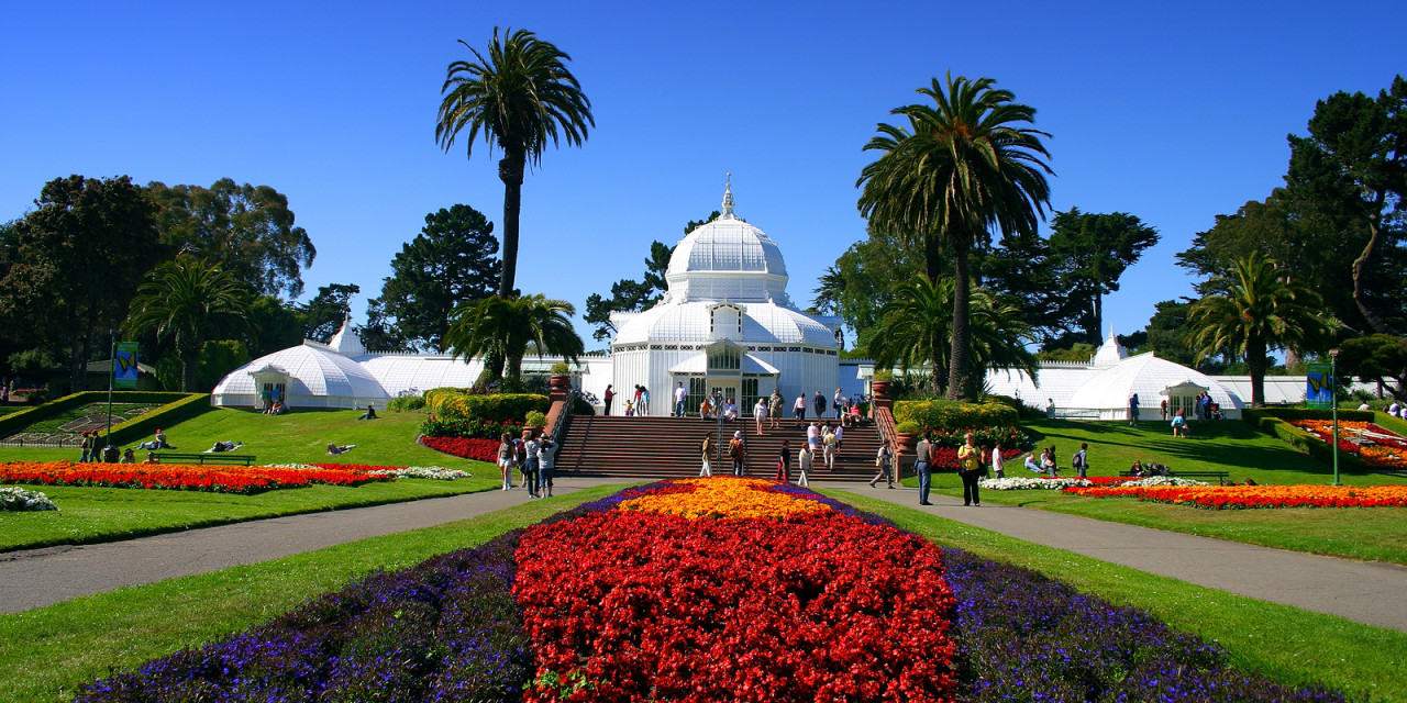 Golden Gate Park offers a myriad of treasures, from world-renowned museums to miles of hiking, biking, and walking trails.