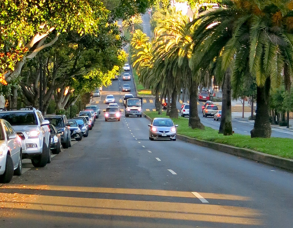 Charming, hilly Dolores Street is shaded by palm trees and lined with grand Victorians.