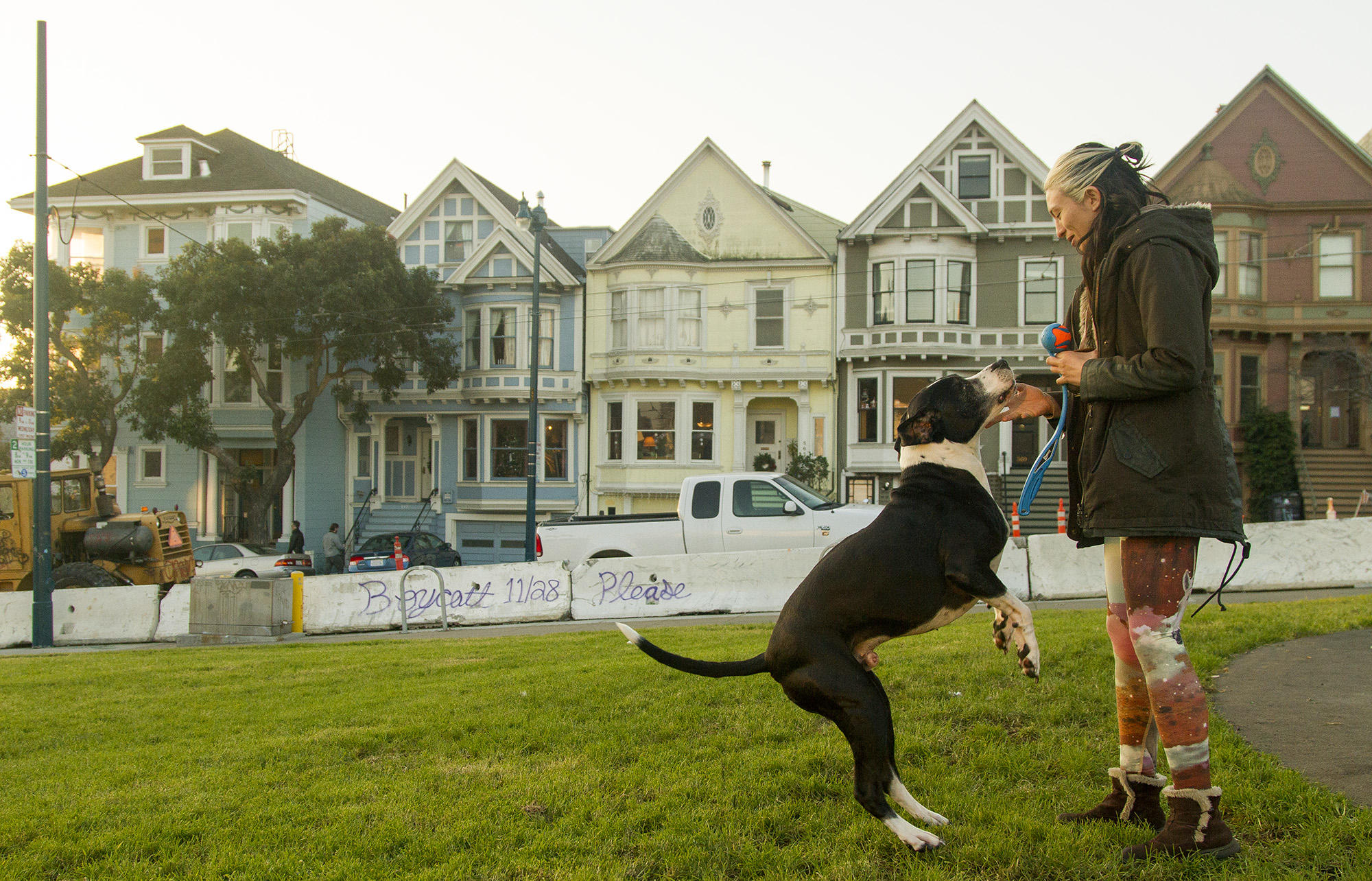 Duboce Park is a favorite gathering spot for families and dog owners.