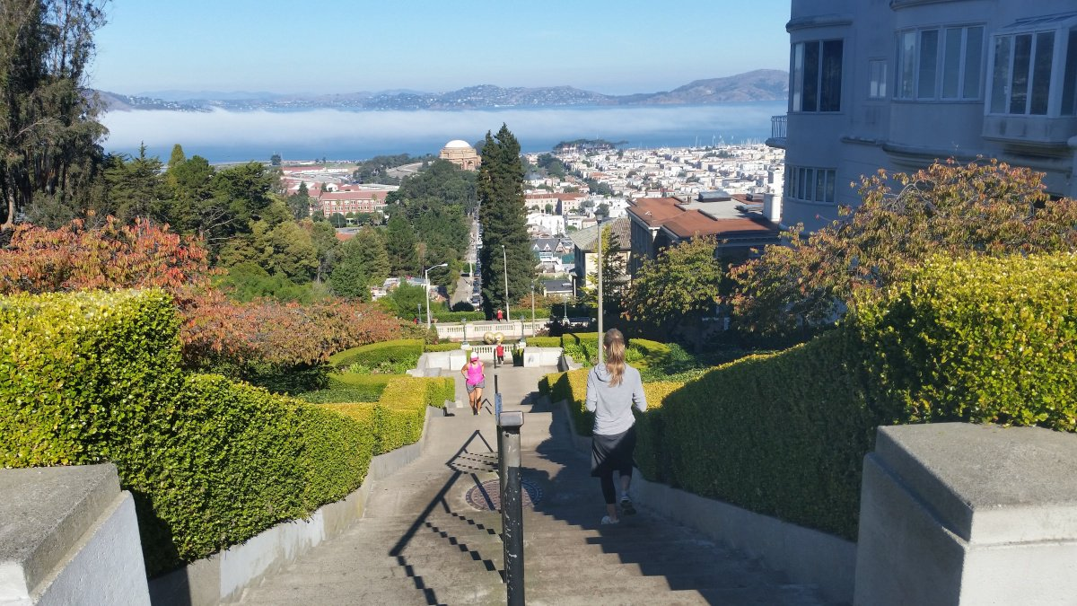 The Lyon Steps provides a great workout and, if you make it to the top, stunning views of the Palace of the Fine Arts and the Bay below.