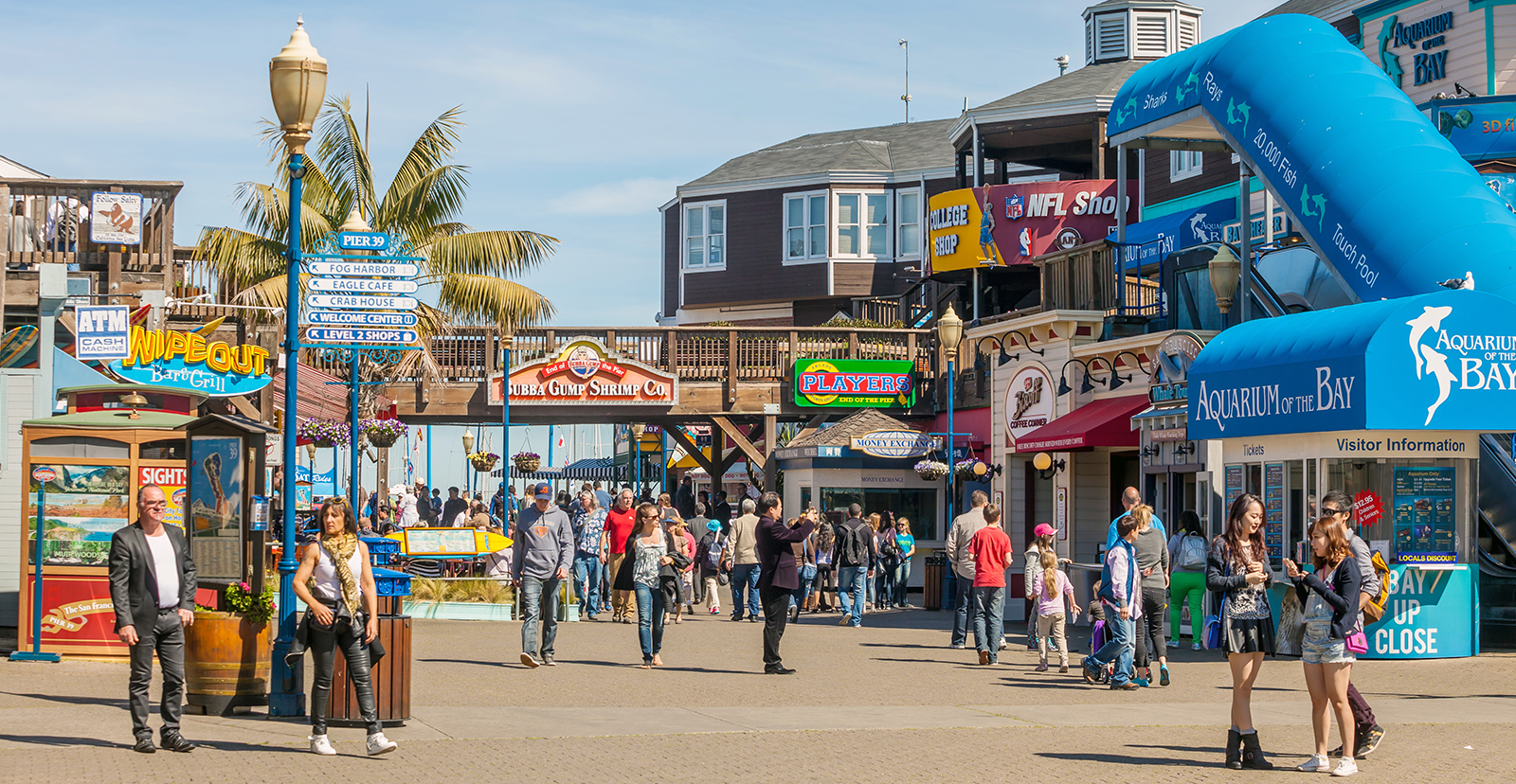 Occupying the northern waterfront area from Ghirardelli Square to Pier 35, Fisherman's Wharf is a lively spot filled with seafood restaurants, museums and tourist-friendly shops.