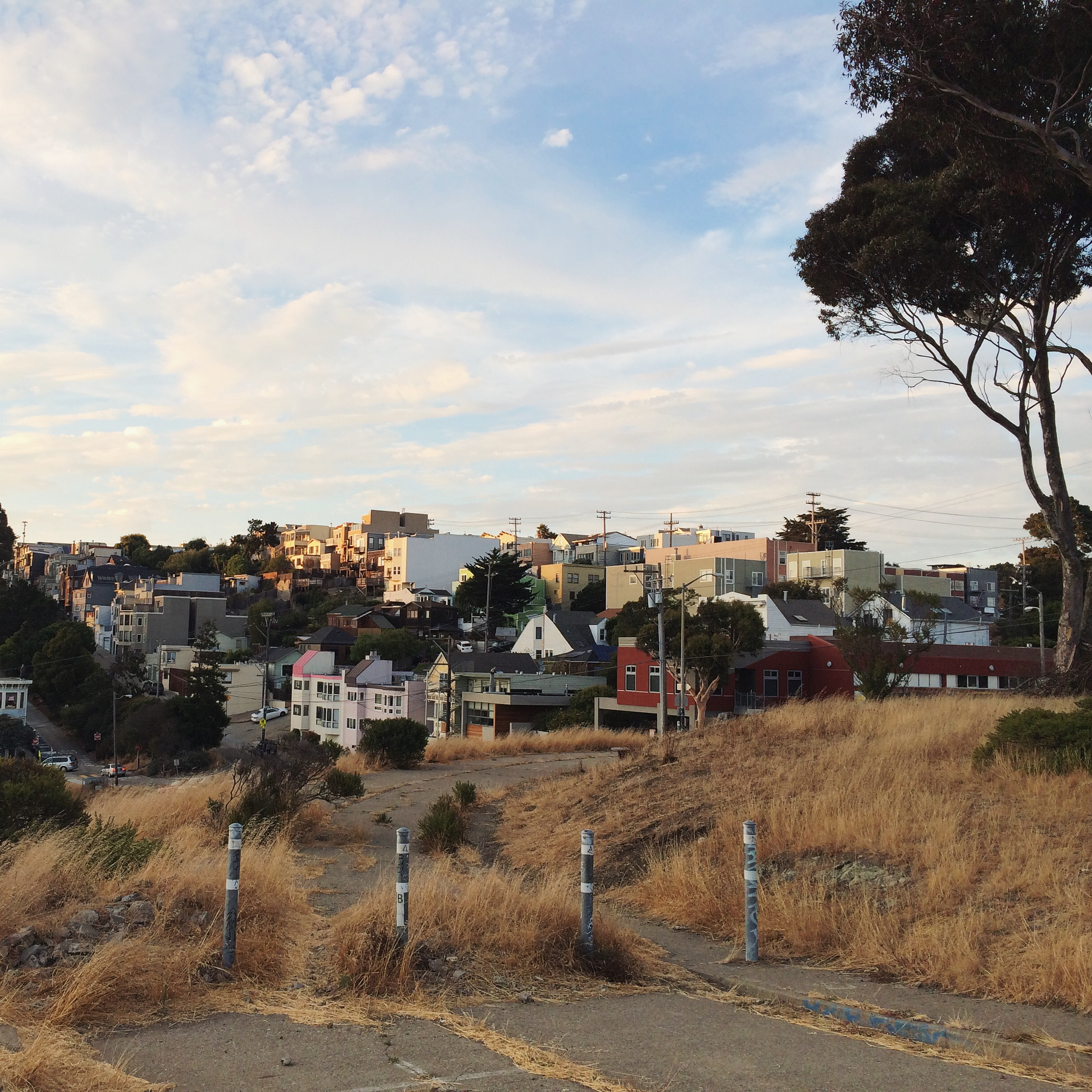The Starr King Open Space offers views of the hills and the Golden Gate Bridge on a clear day.