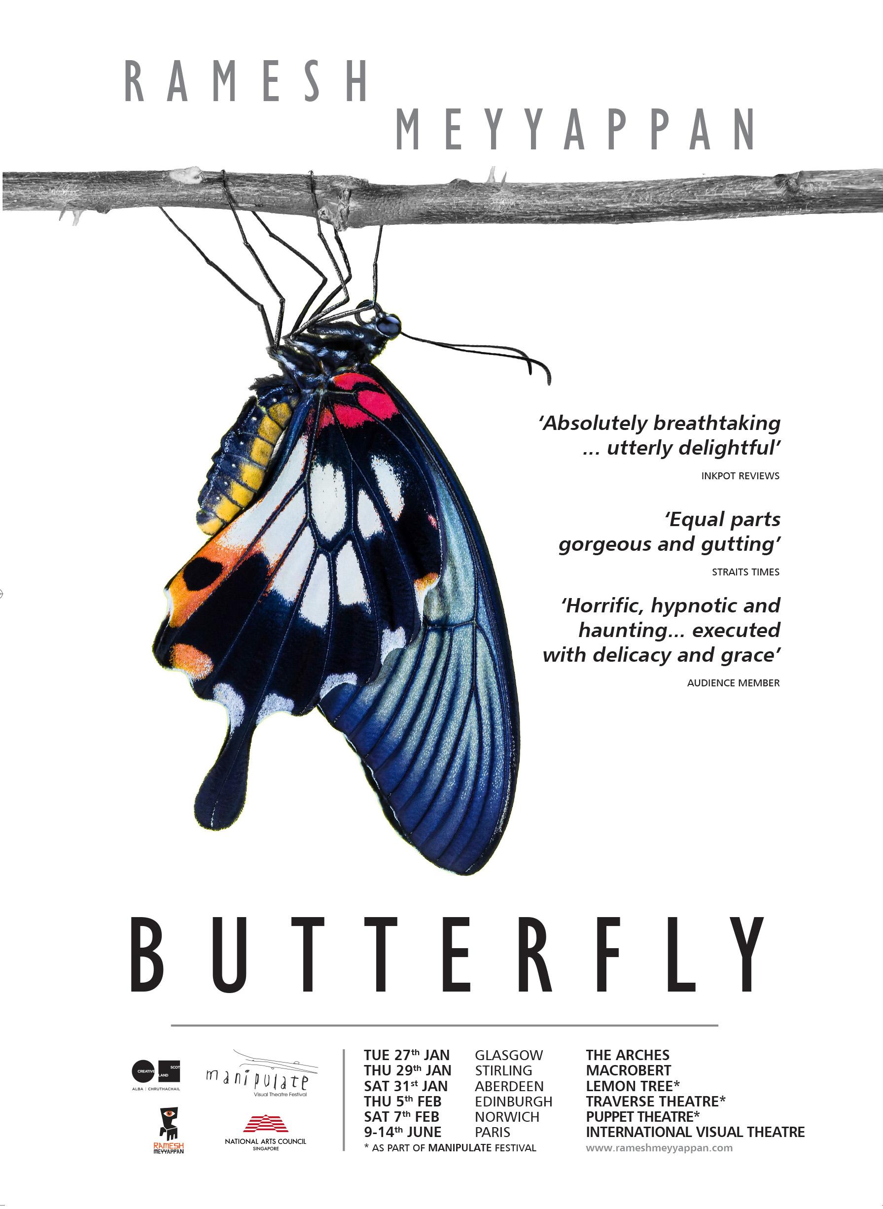 Butterfly (Marketing, press, design, photography)