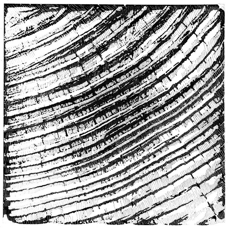 Nero su bianco, bianco su nero, 1979  serigrafia, 69x49 cm