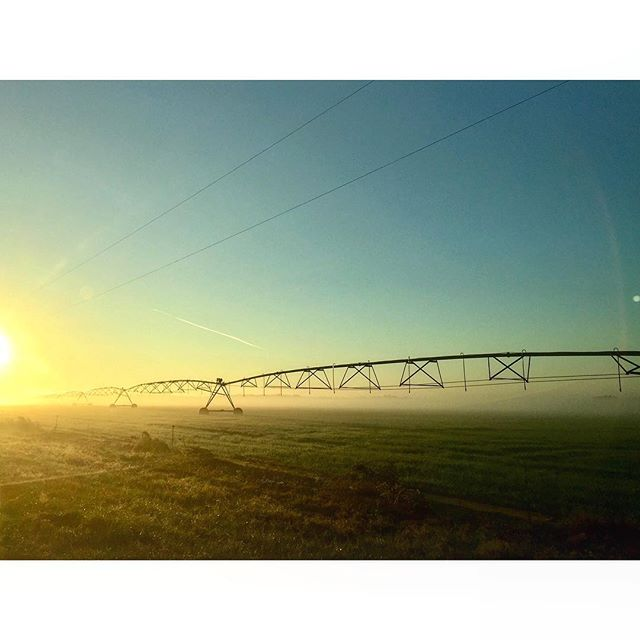 Happy Ag Day! Looking forward to seeing all of the great Flavor of Georgia contestants this afternoon.  ______________ #GaAgWeek2018 #gafarmlife #georgiagrown #iamgeorgiagrown #exploregeorgiafarms #exploregeorgia #classicgeorgia #georgia #peachstate #georgiaonmymind #sowega #irrigation #farm #farms #farming #ag #agriculture #agricultura #farmlife #sunrise #rural #rural_love #agday #nationalagday #nationalagricultureday