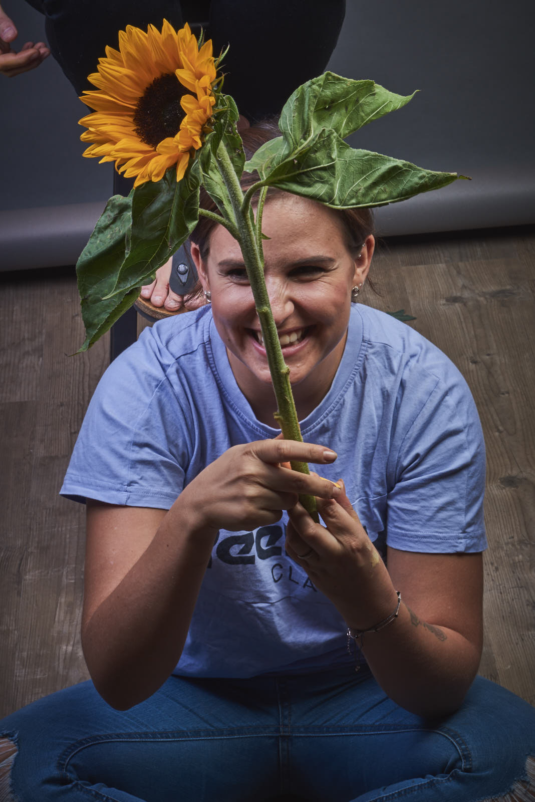 2018-09-20-sunflower-Merle22039 Kopie.jpg