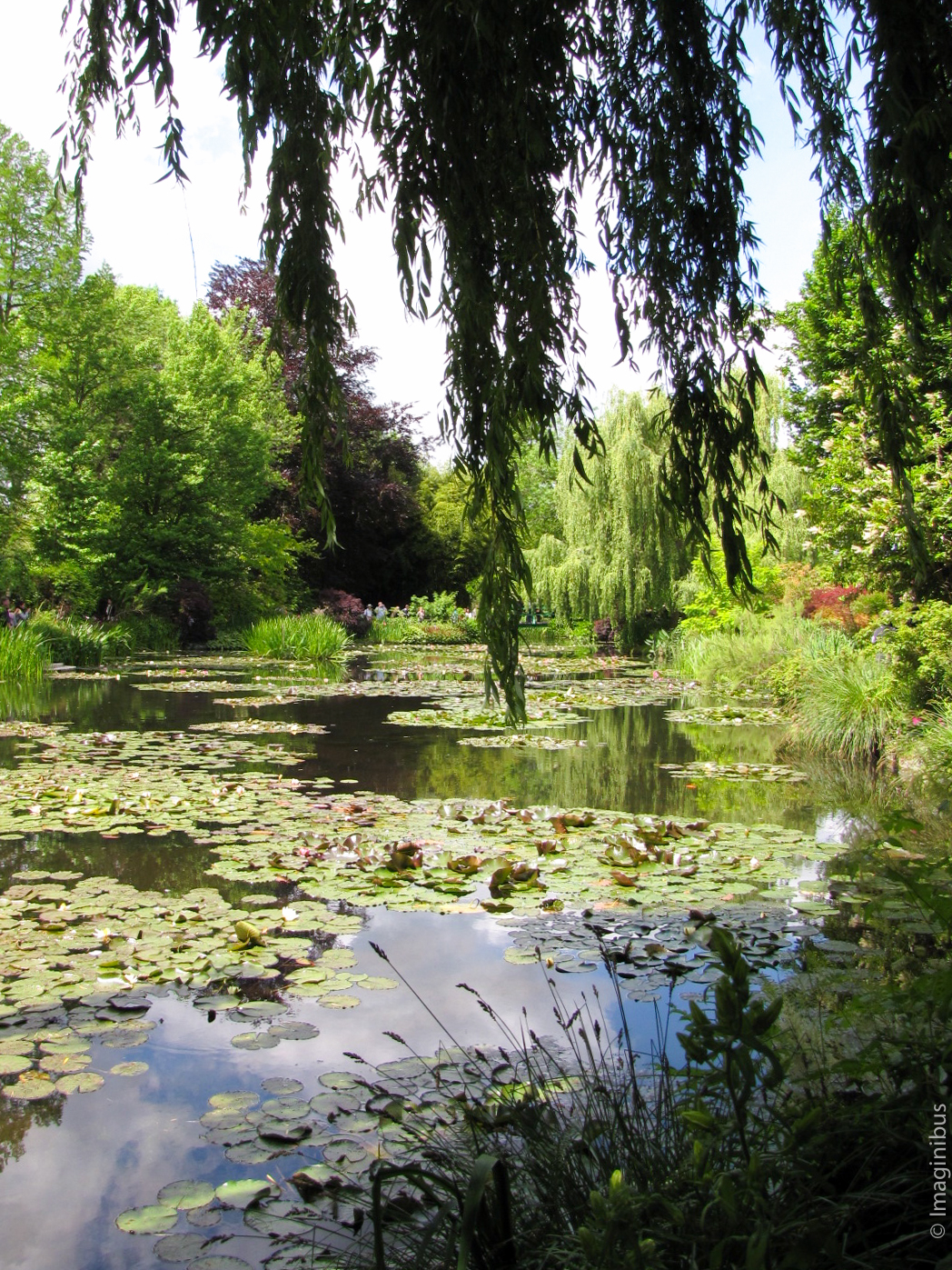 Giverny France Monet Garden Pond