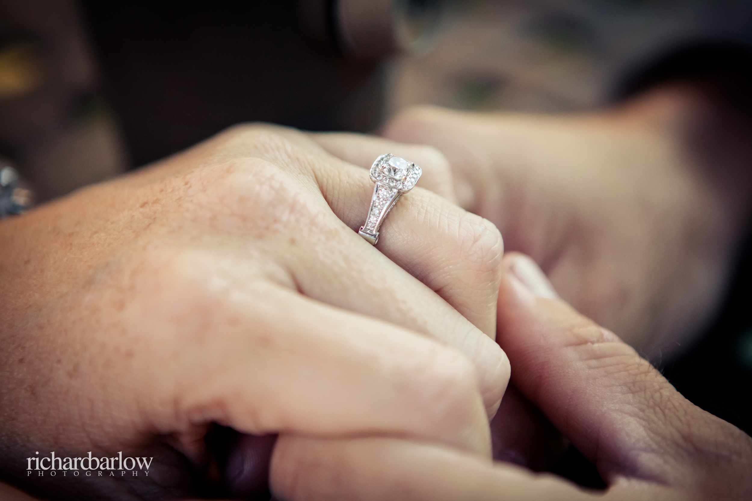 richard barlow photography - Mike and Renee Engagement Session NC-12.jpg