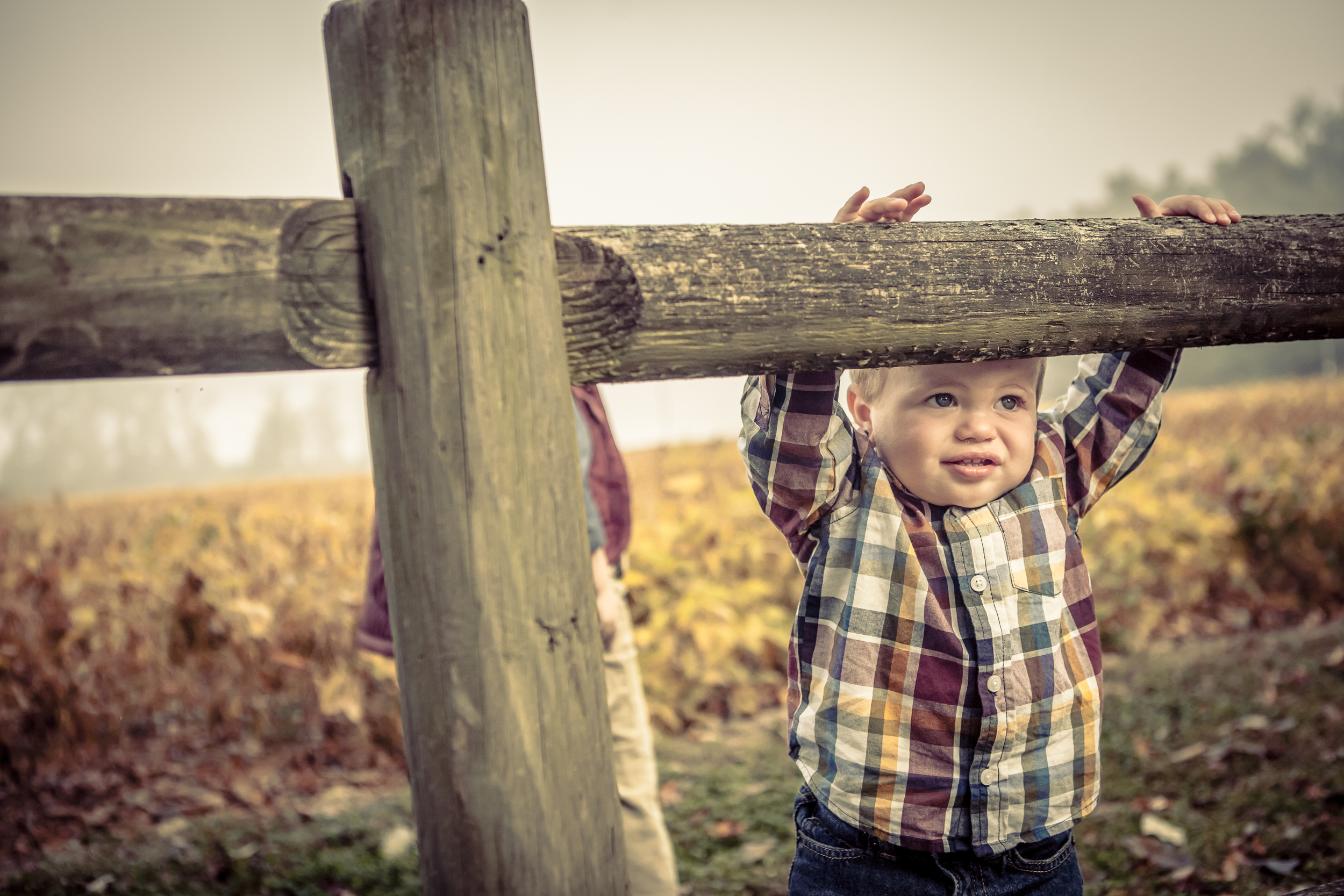 Crawford Family Sessions-86.jpg