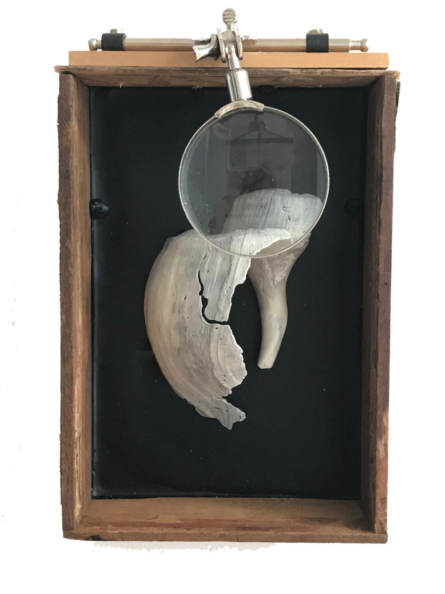 Charleston Box #50  Wood, encaustic, metal, shell Robin Howard 2017