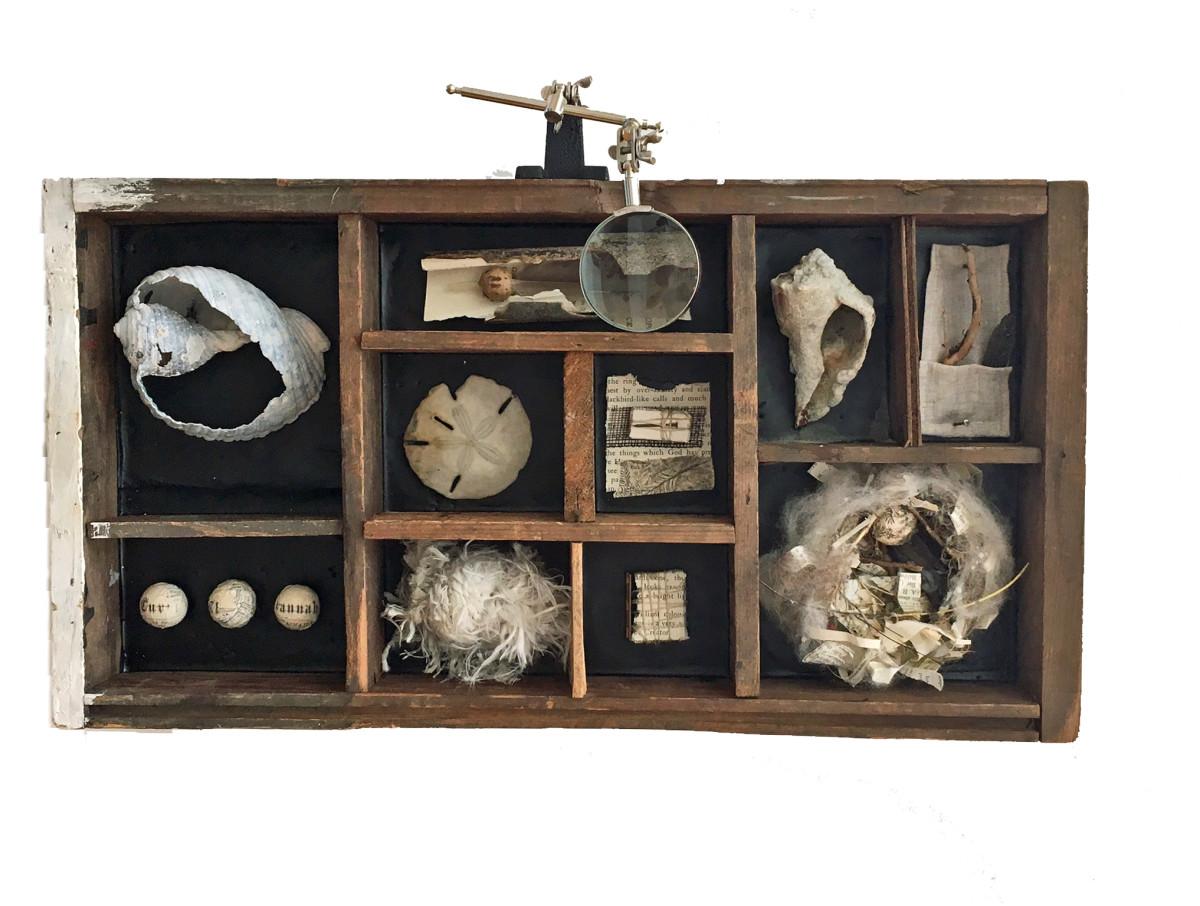 Charleston Box #60  Wood, encaustic, shell, fiber, paper, metal, twine, linen, wool Robin Howard 2017