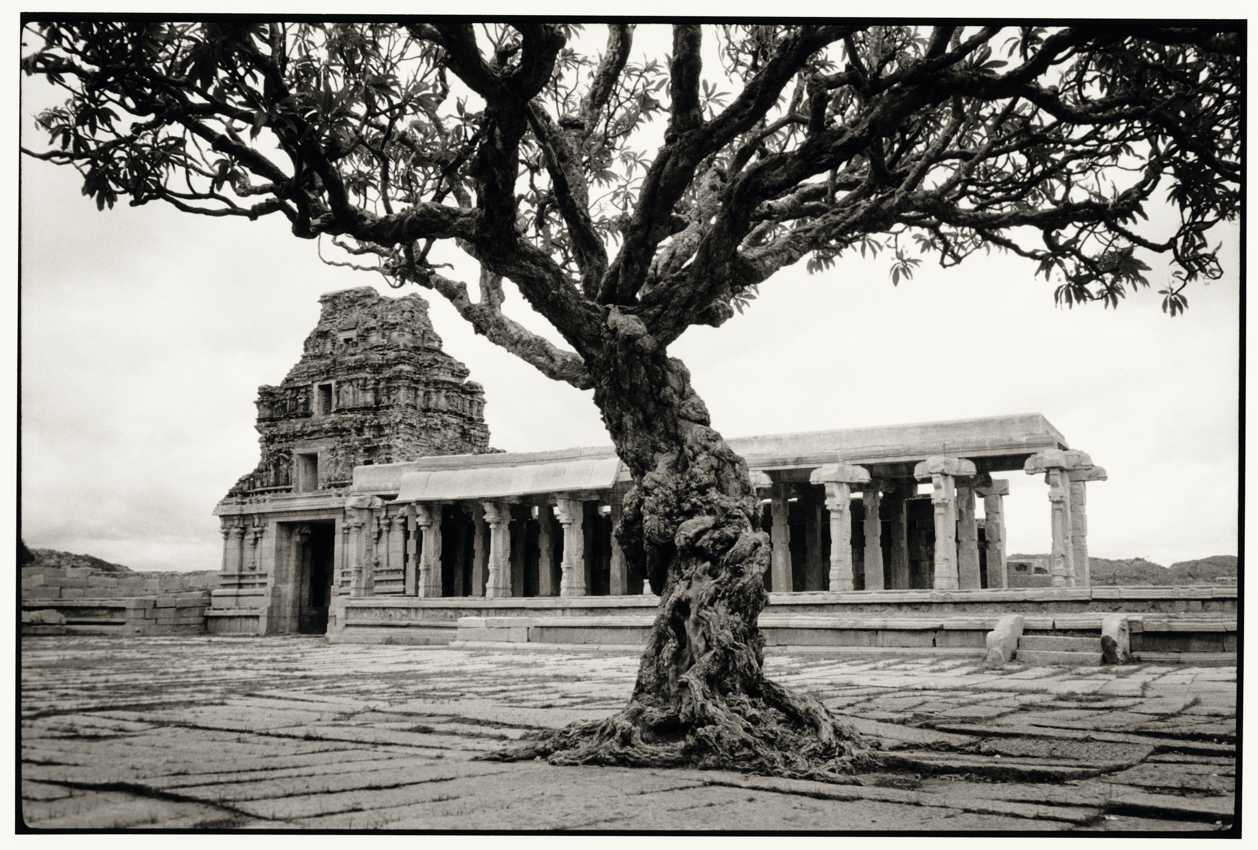 temple-08_v1.jpg