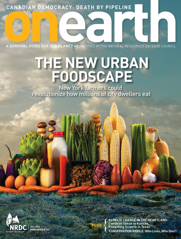 OE_Food_cover.jpg