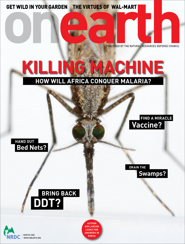 OE_MalariaCover.jpg