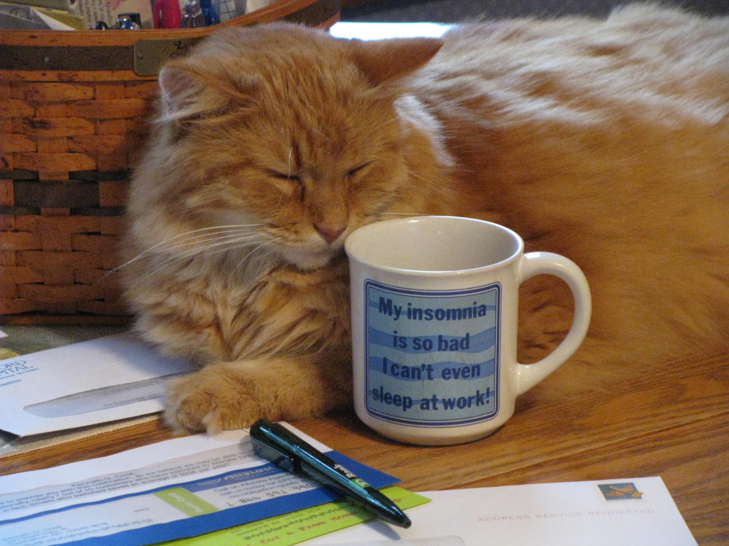 I need my coffee.JPG