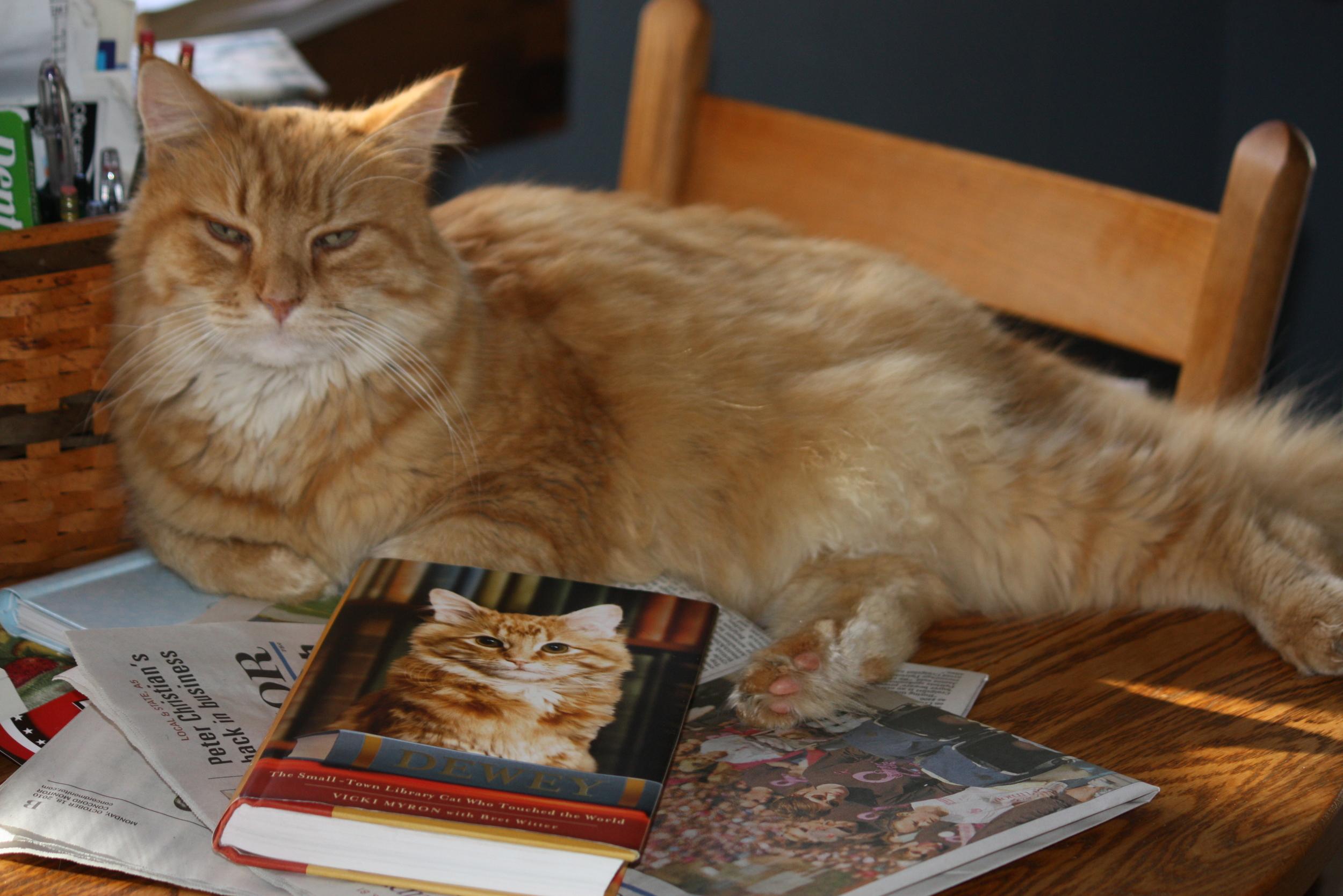 Rusty's favorite book.JPG