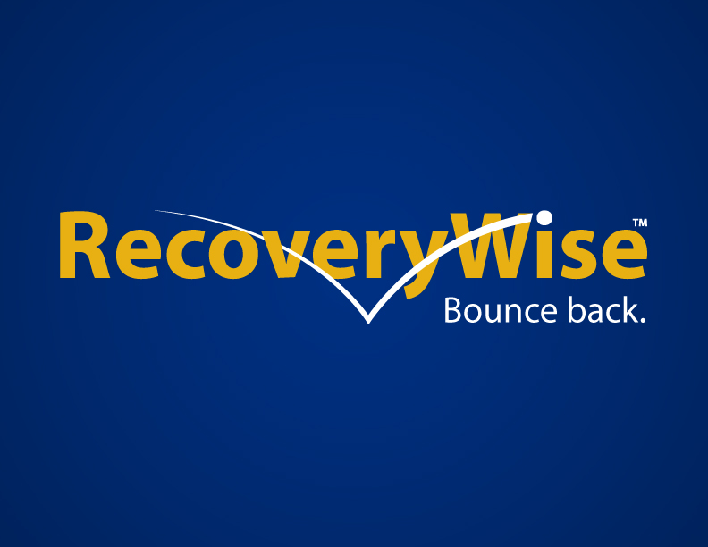 Brand: RecoveryWise Business Recovery Planning Tool