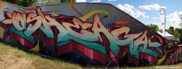 osheaga finished wall aug 6 2012 9 wm.jpg