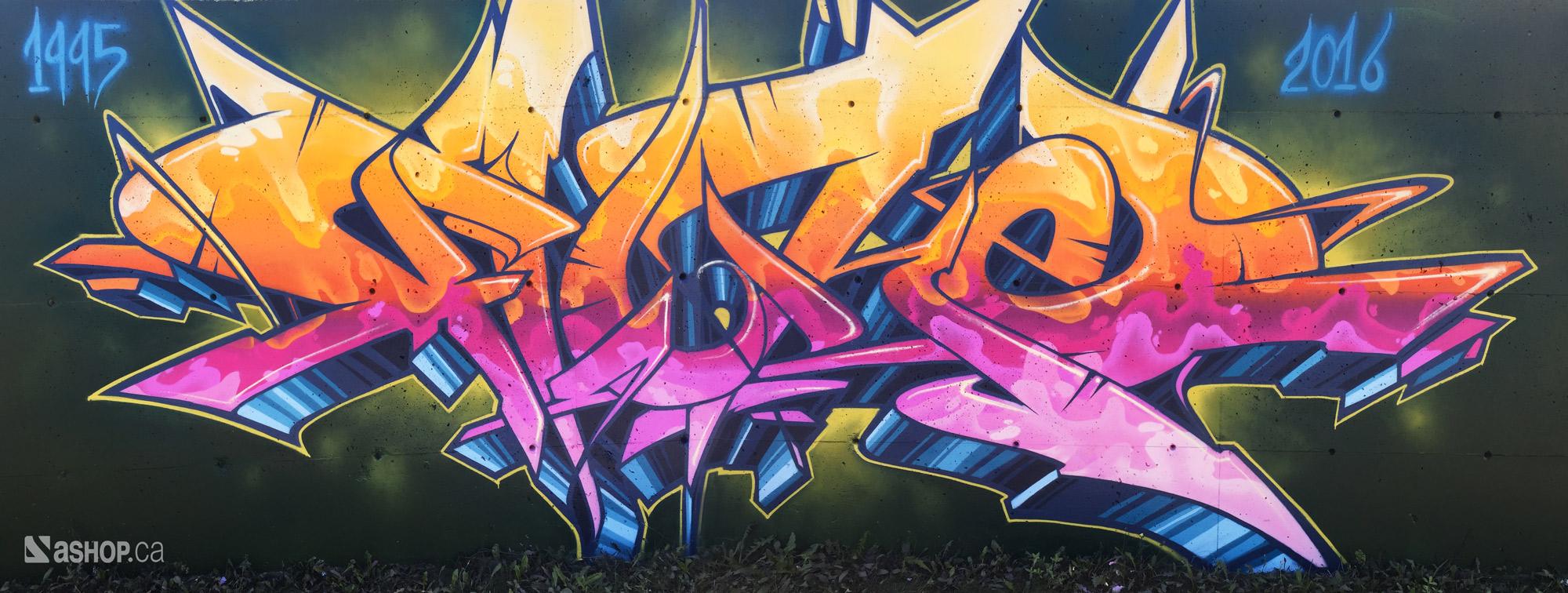 fluke_ashop_a'shop_mural_murales_graffiti_street_art_montreal_paint_cheminvert_WEB.jpg