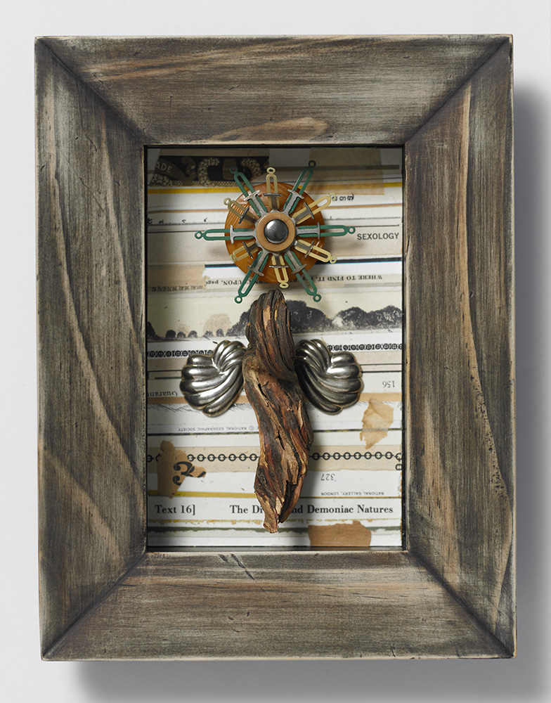 Wood Angel - Sexology