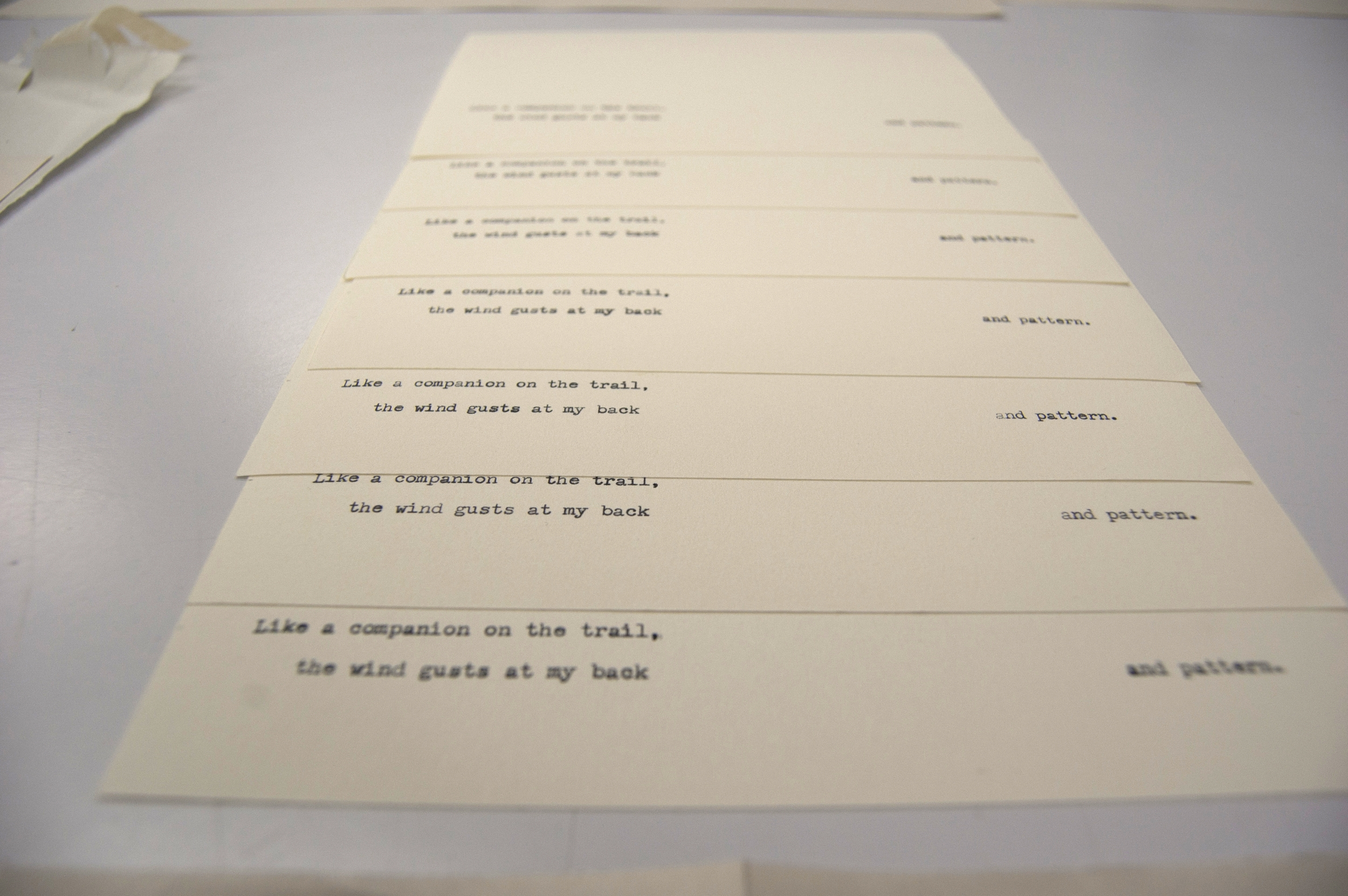 Nicole's handy work. Pages from the edition, typed over and over.
