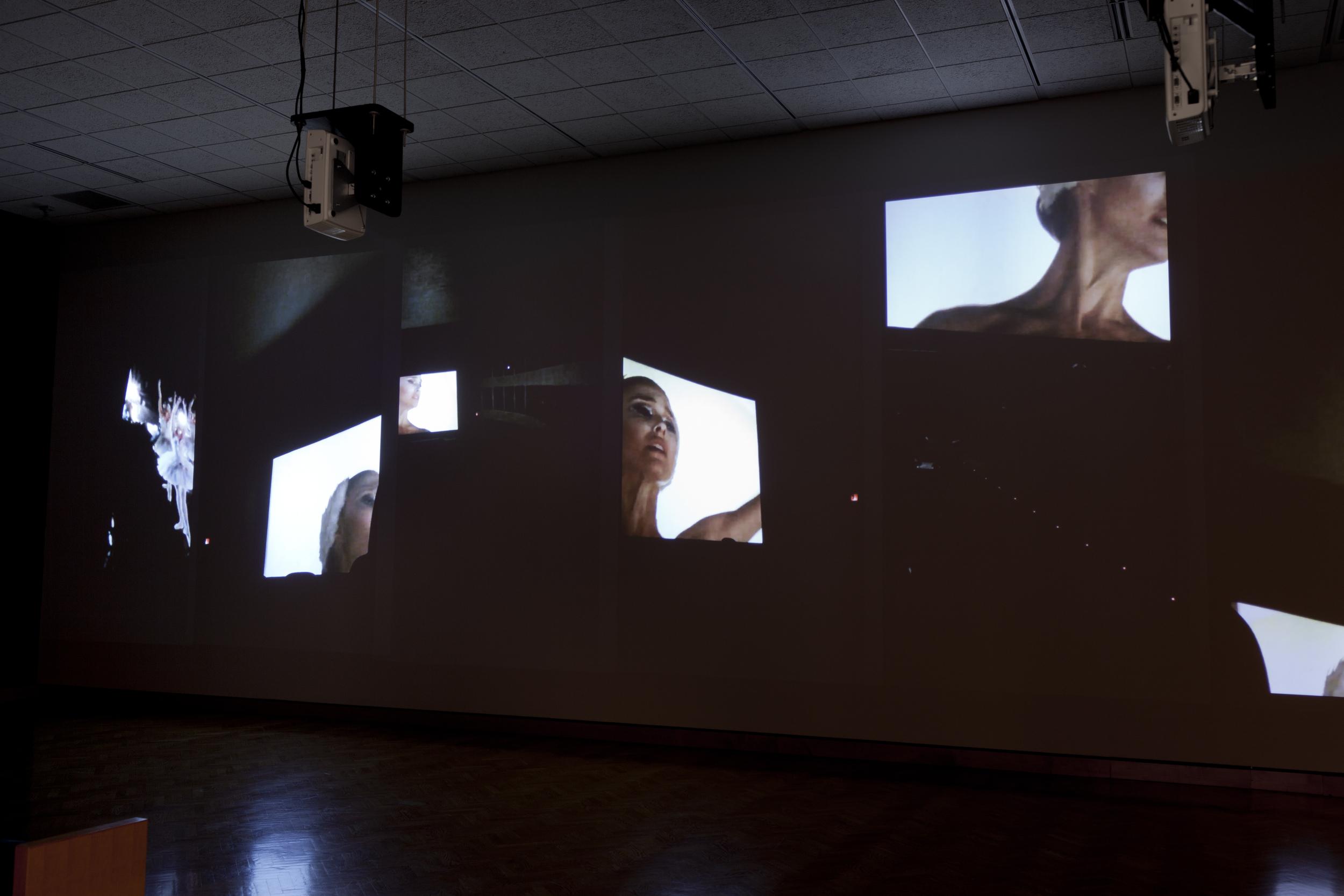 Movie (Black Swan) , six channel video installation, 8:23, Minneapolis Institute of Arts, 2011, Walker Art Center, 2015