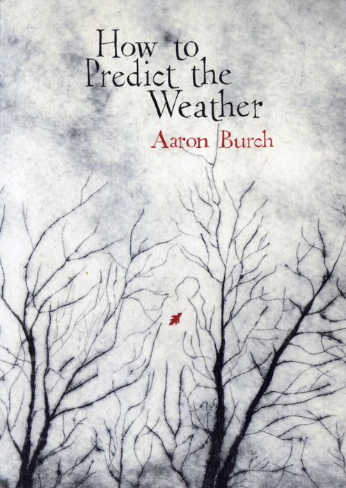 How to Predict the Weather by Aaron Burch   Cover Illustration by E. B. Goodale for Keyhole Press