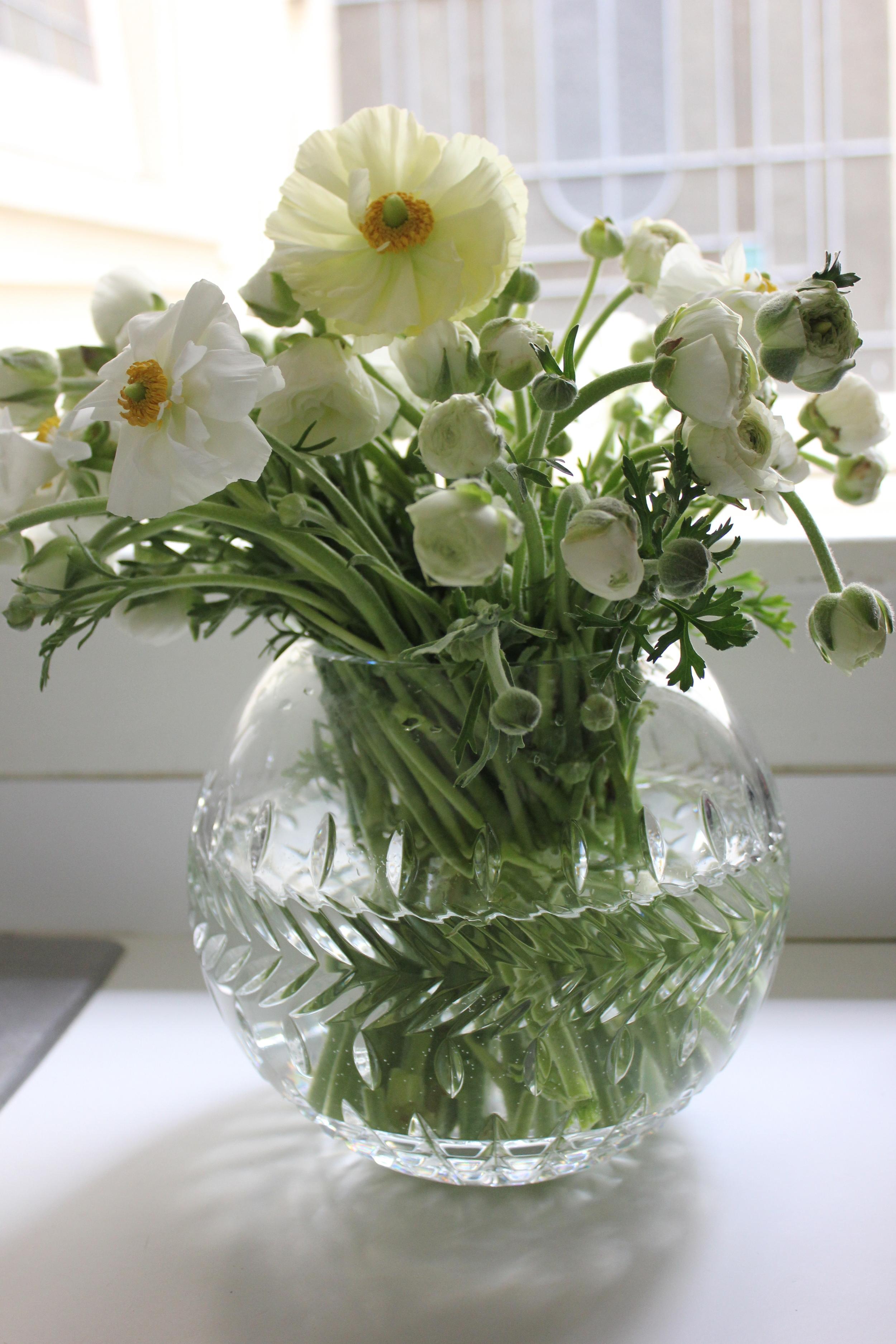 White ranunculus in crystal vase