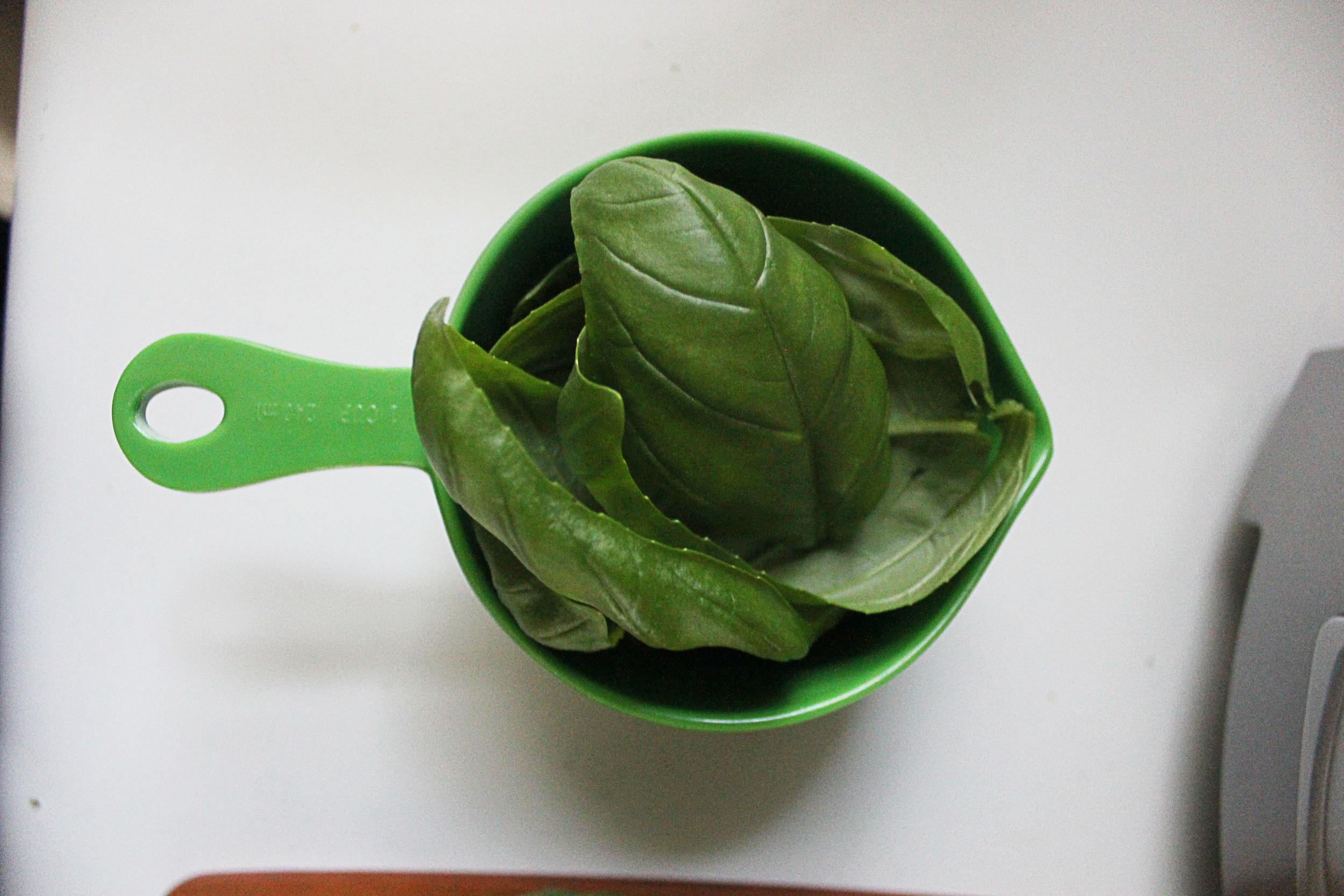One cup of basil leaves.jpg