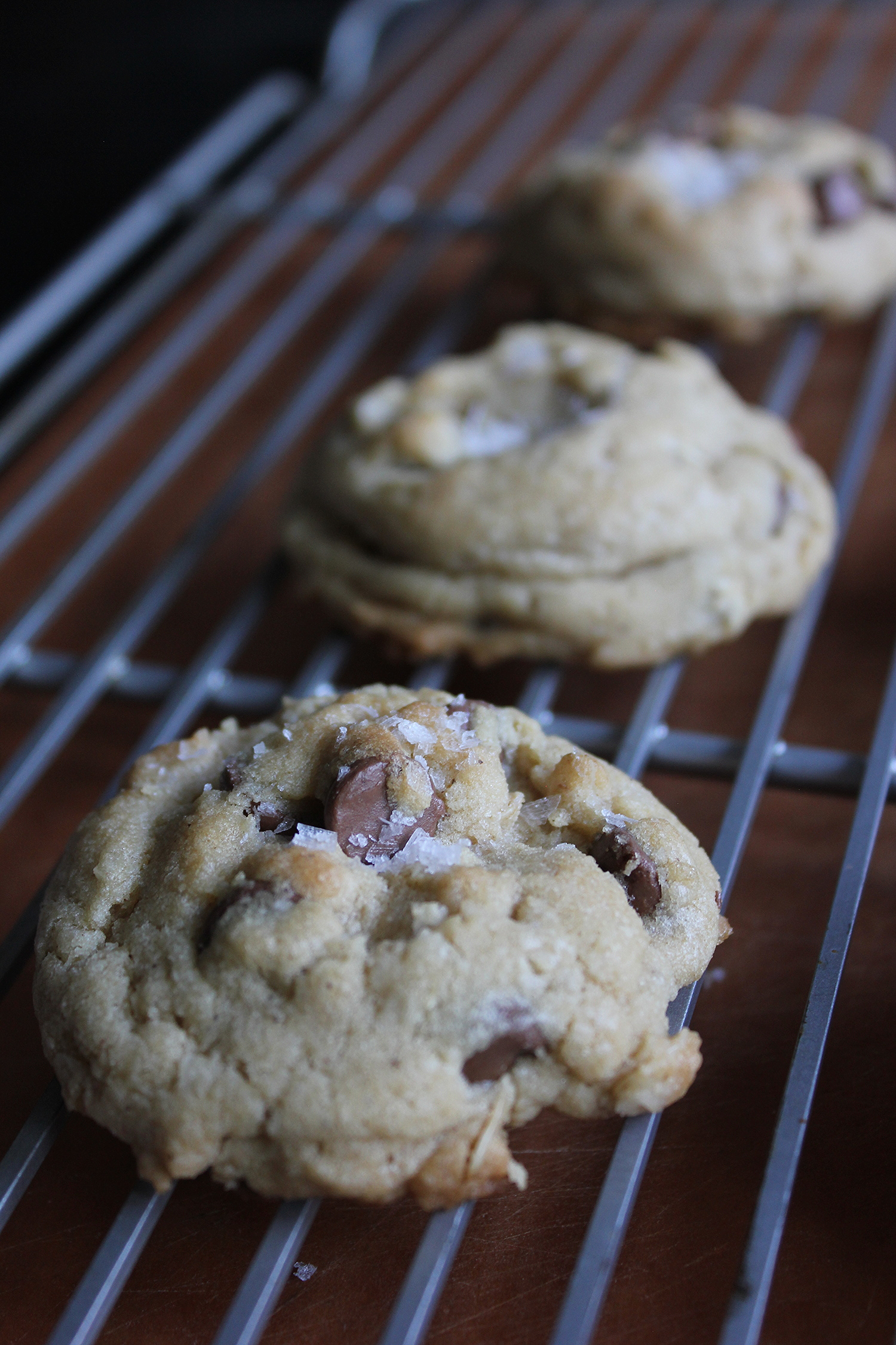 Joy the Baker's Best Brown Butter Chocolate Chip Cookies + Coconut and Oatmeal - www.fancycasual.com