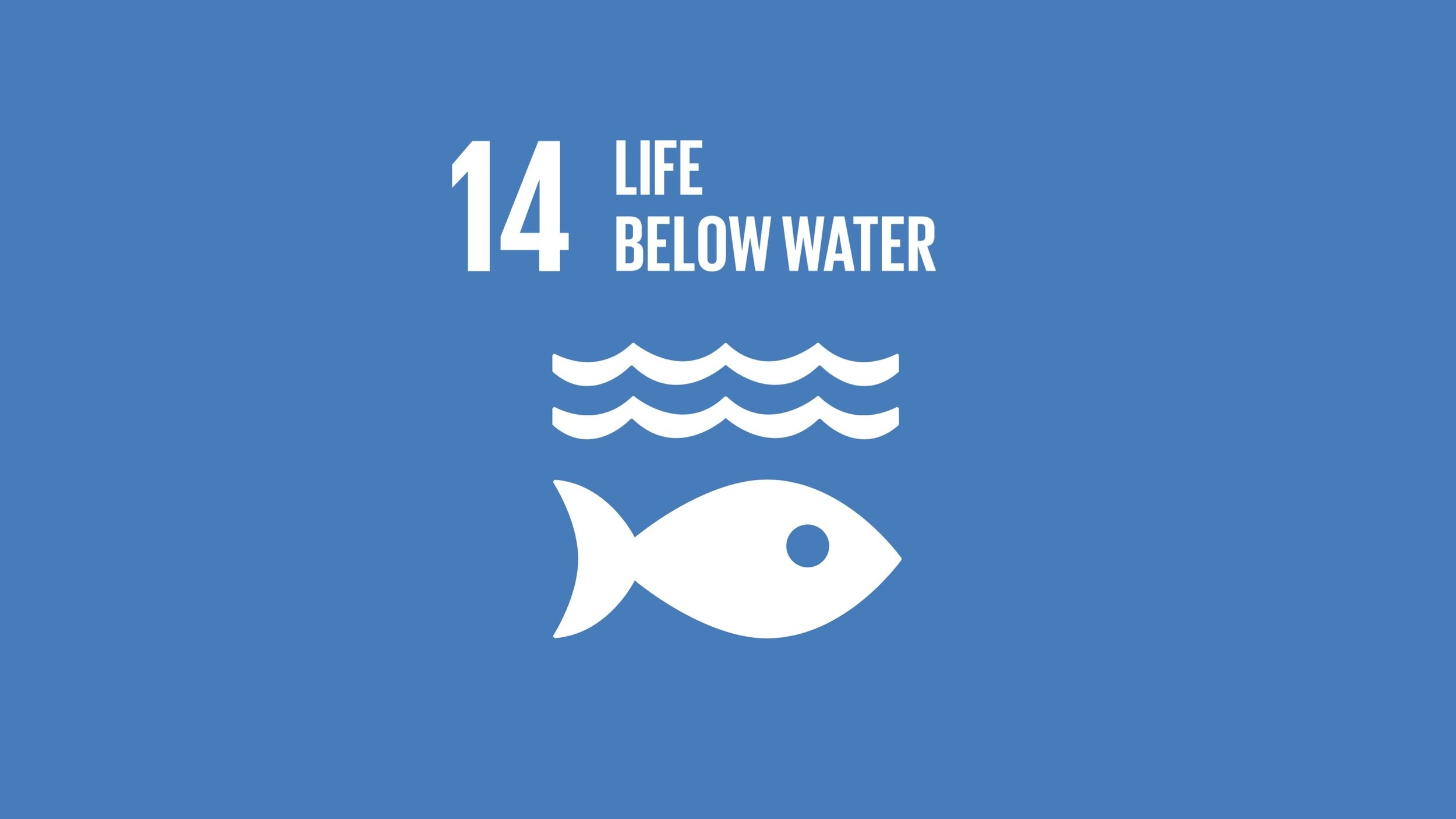 SDG14.jpg
