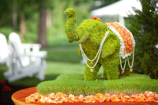 http://www.weddingbells.ca/planning/50-origina-wedding-ideas-your-friends-havent-thought-of-yet/slide/damion-edwards-2/