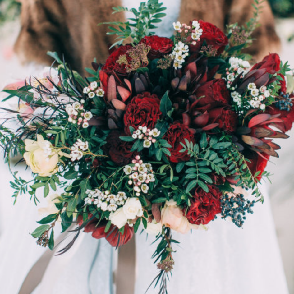 Pops of red and green, great for the white snowy backgrounds!  Photo: deerpearlflowers.com