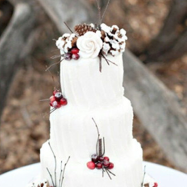 Lovely white cake with seasonal accents!  Photo: The Perfect Palette