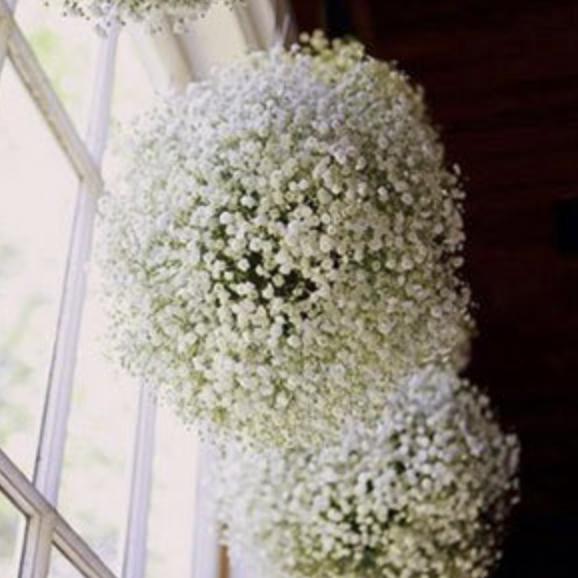 Photo: www.elegantweddinginvites.com