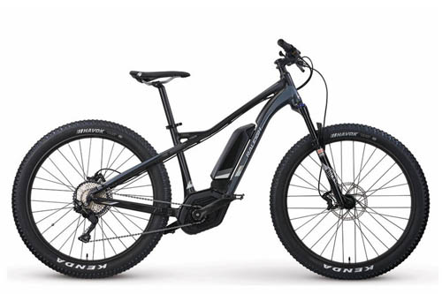 2018 Raleigh Tokul IE