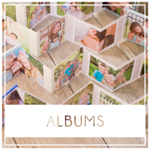 Albums are great archival item to cherish for generations, especially if you are lacking wall space.  There are so many options for books. I offer sizes from mini accordion books to 10×10 thickpaged wedding albums. Prices start at $150.