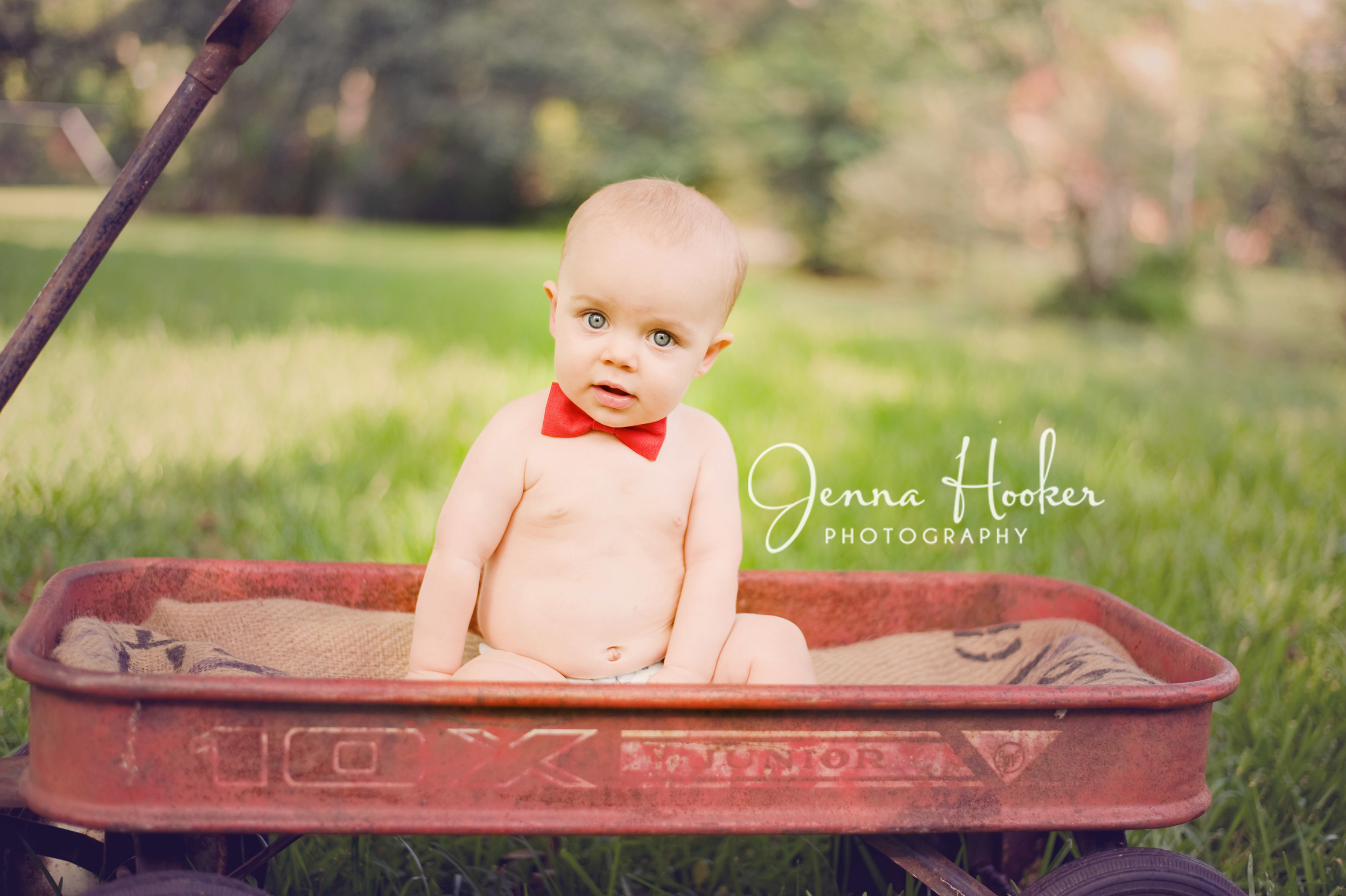6 month old boy, bowtie and red wagon