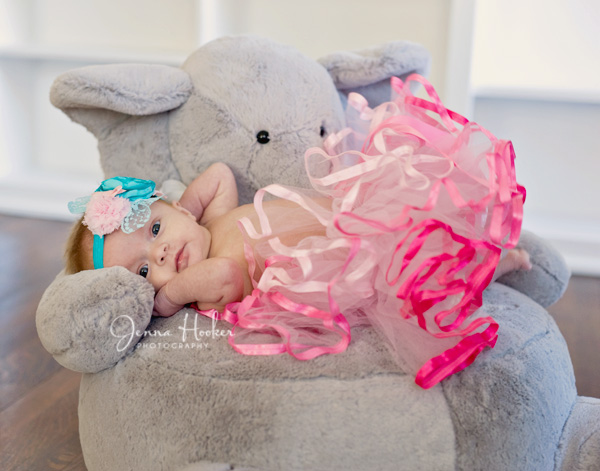 Her Elephant and pink tutu.