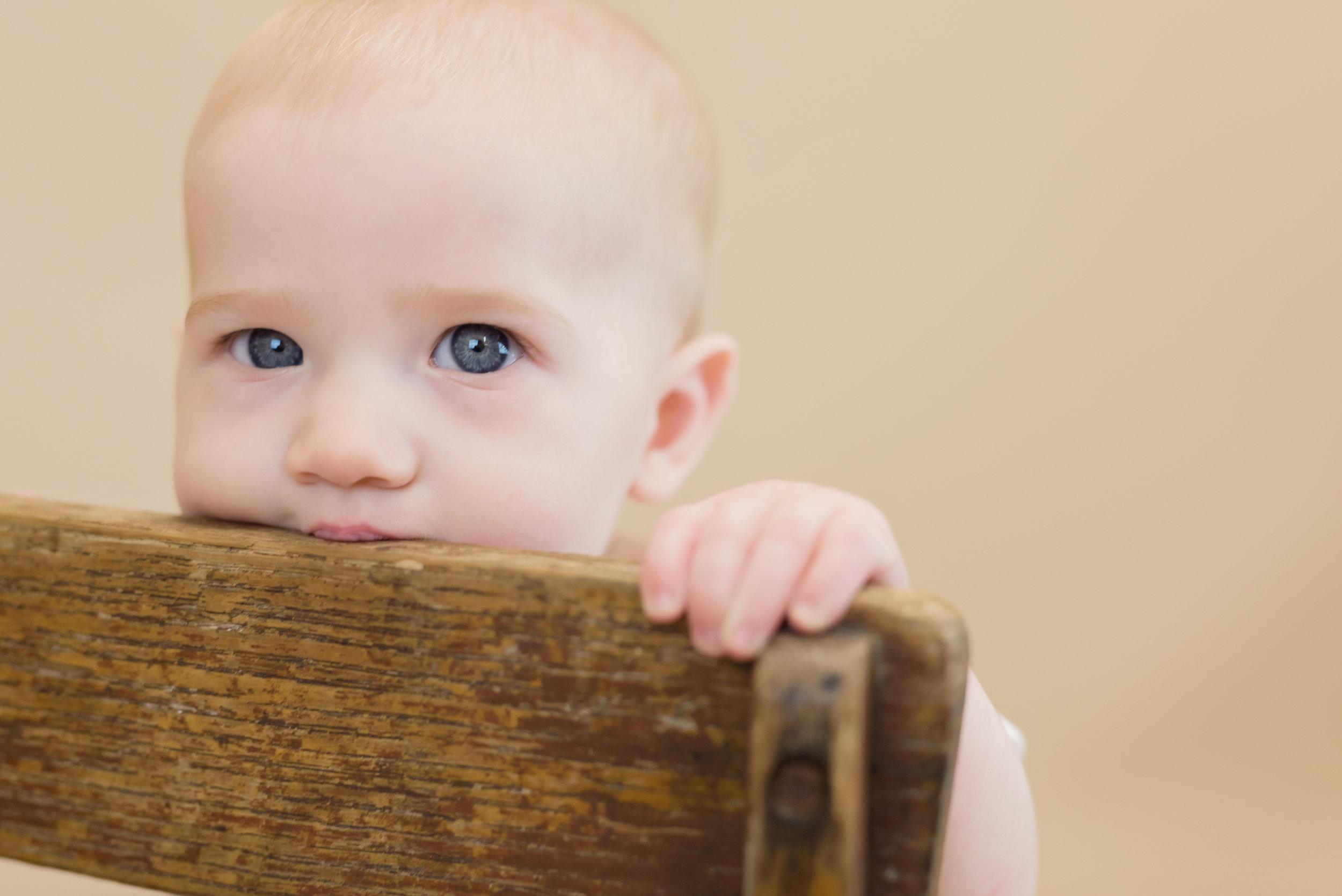baby blue eyes photos