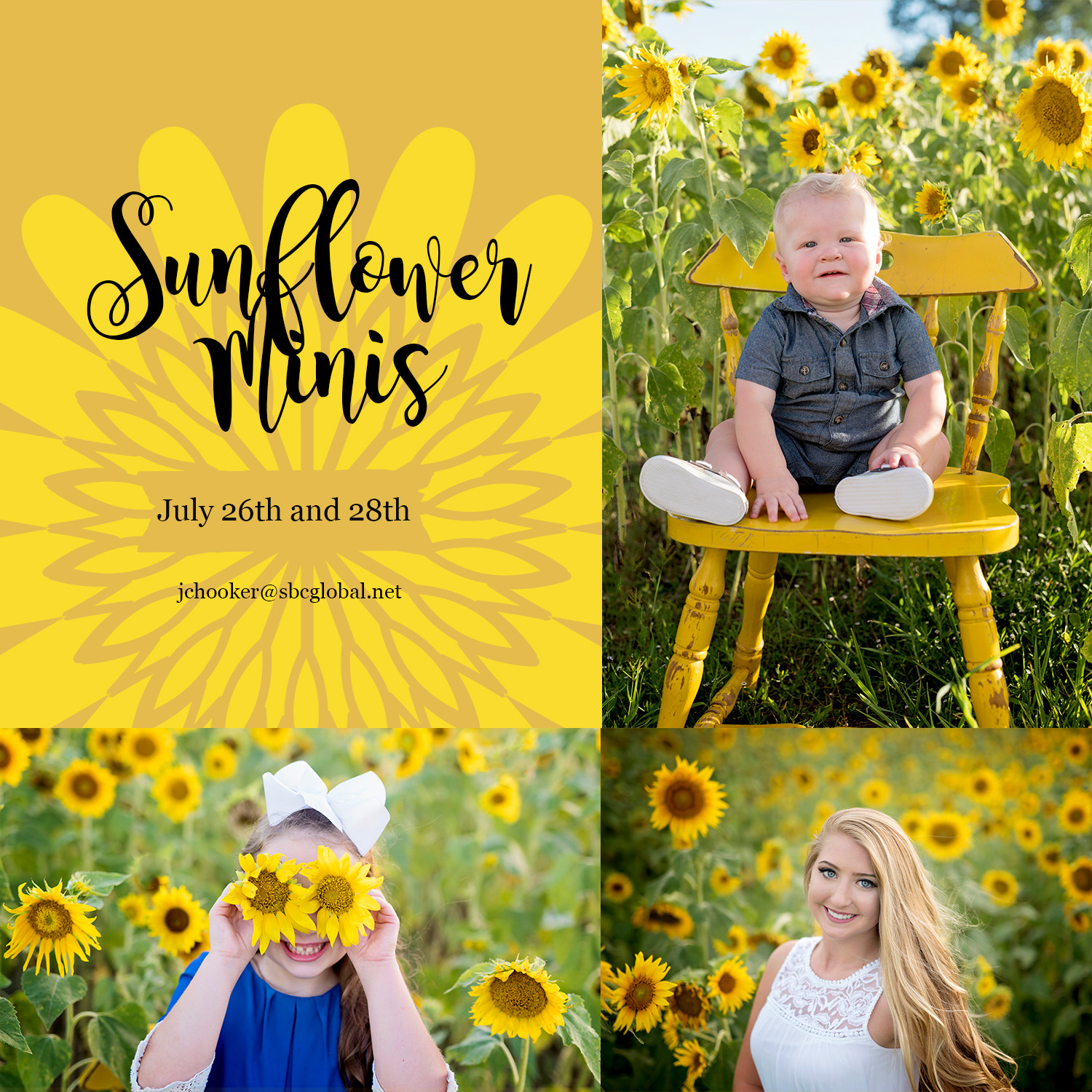sunflowers-5x5.jpg