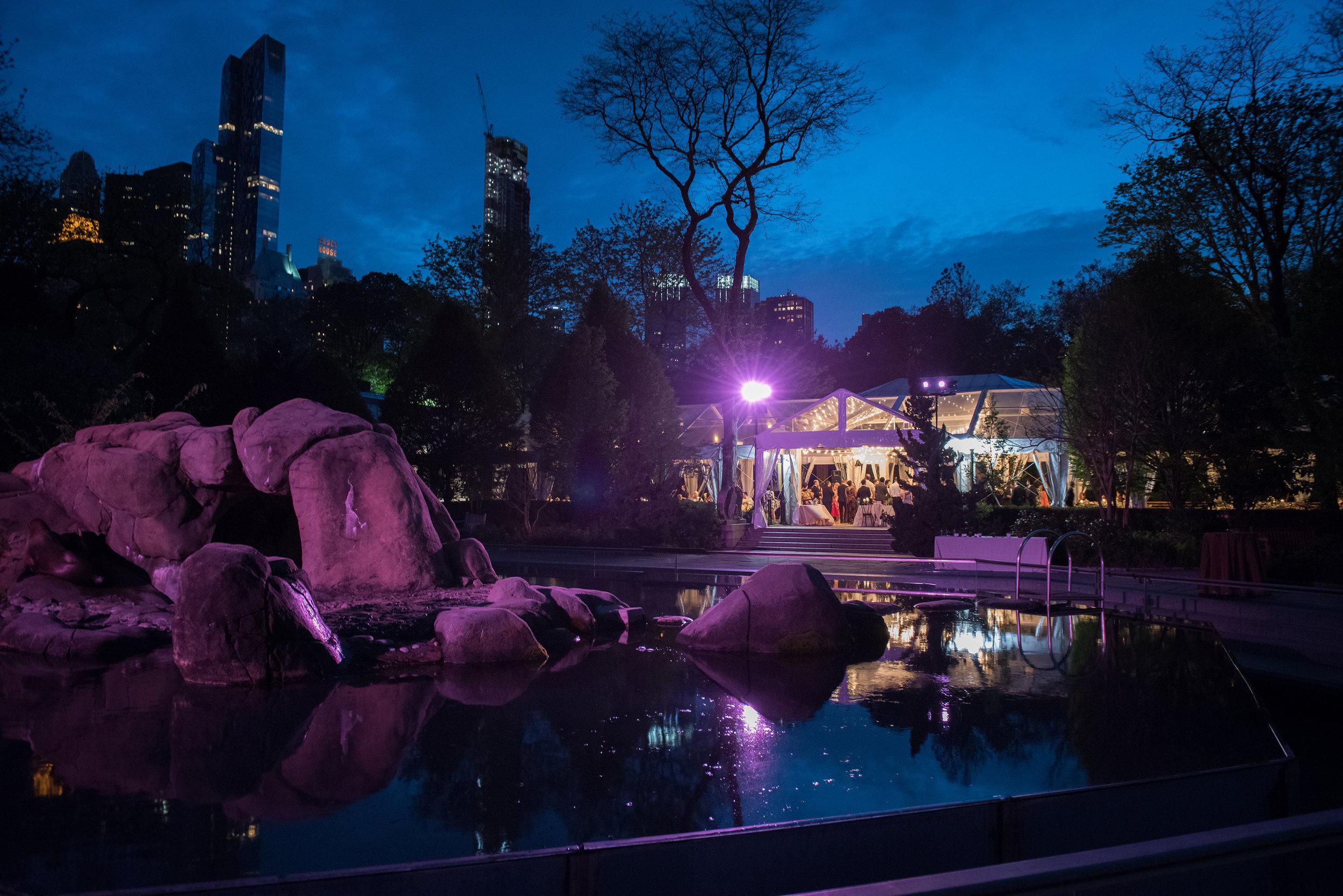 victorious-events-nyc-033-colleen-taka-central-park-zoo-wedding-raymond-hamlin.jpg