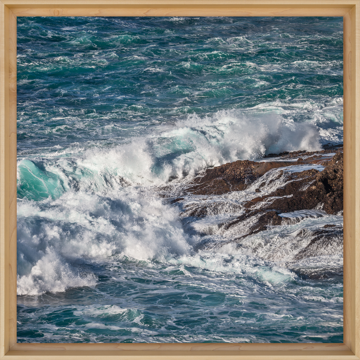 Point-Lobos-Surge.jpg