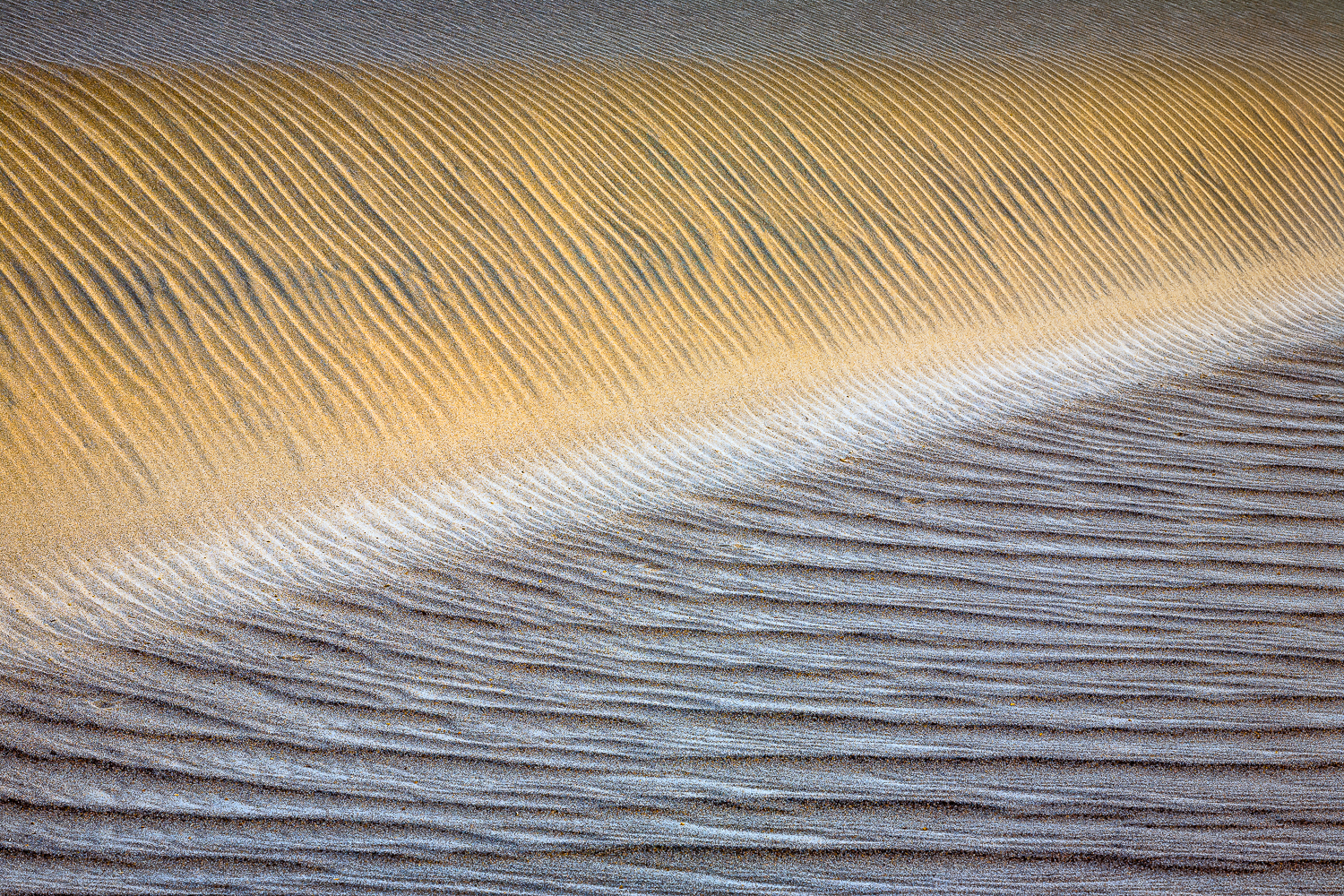 Dunes II (No Footprints)