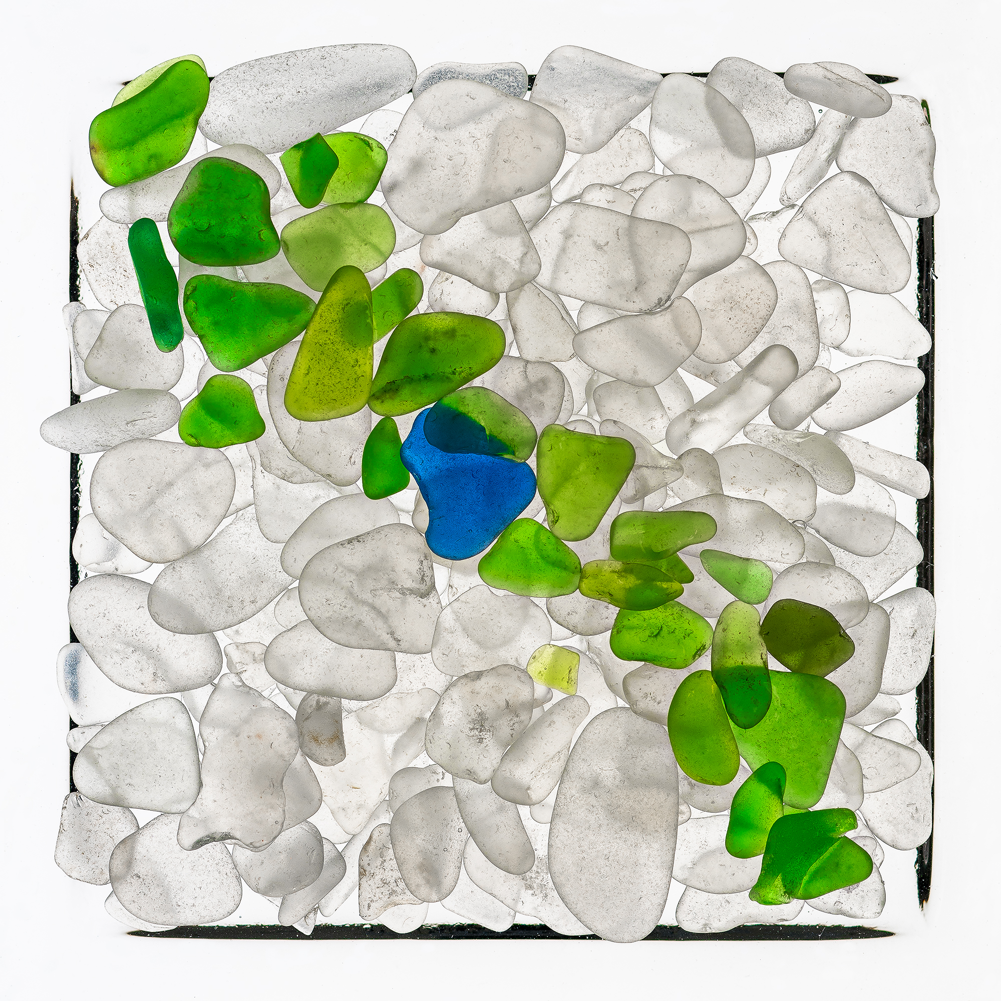 Glass Study 5